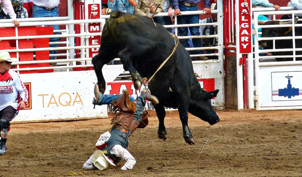 Bull Riding most dangerous sports